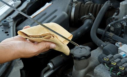 Car servicing experts