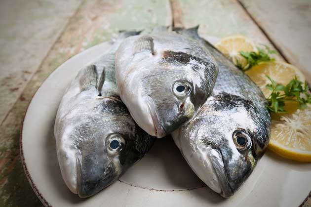 Buy Fresh Seafood, Launceston