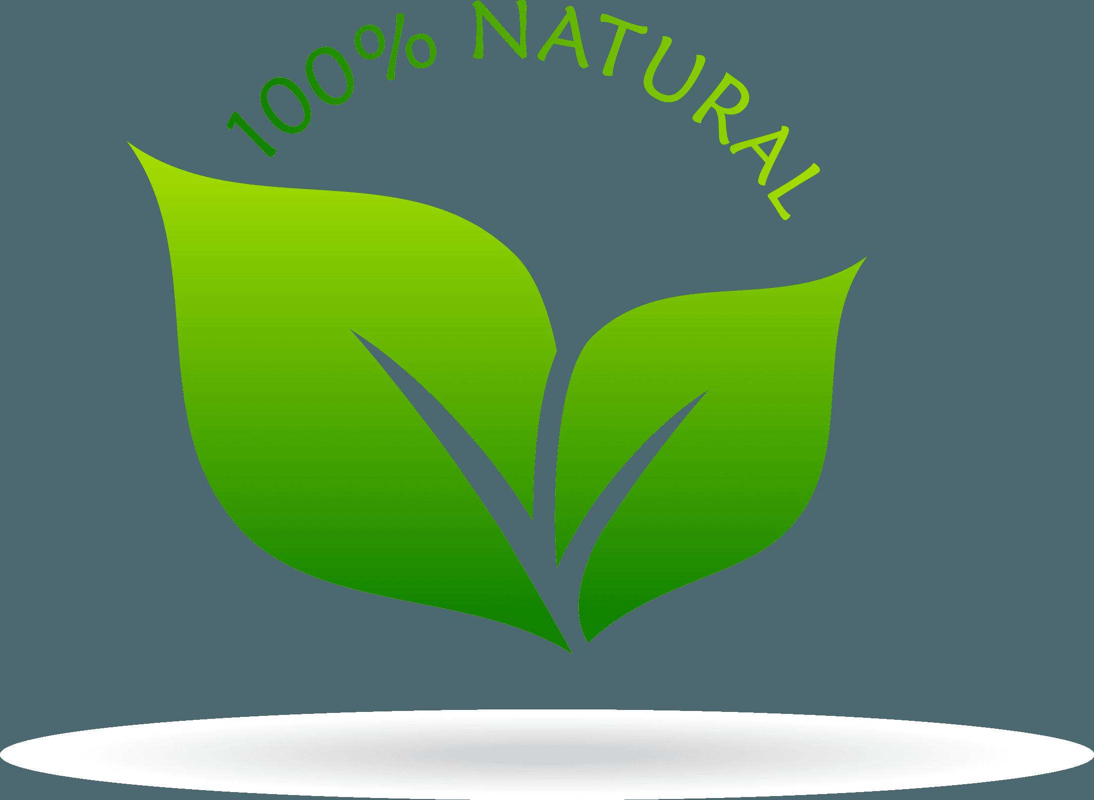 Icona 100% Natural con foglie verdi