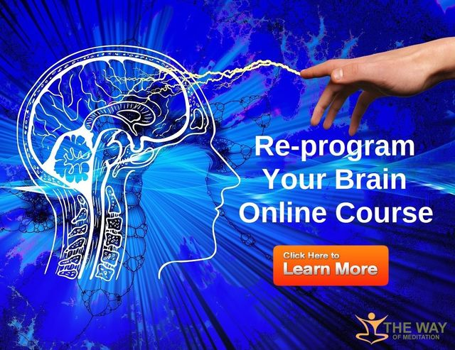 How To Apply Brain Science Of >> Neuroplasticity The Science Of Changing Your Brain