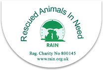 Rescued Animals in Need: Cat adoption Sevenoaks, London.