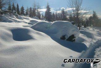 gardafox