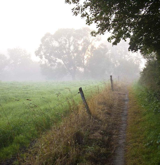 Mooie natuur random de camping in de Belgische Ardennen