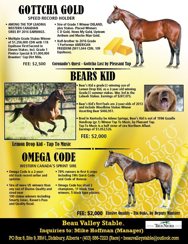 Canadian Thoroughbred Horse Society : British Columbia Division