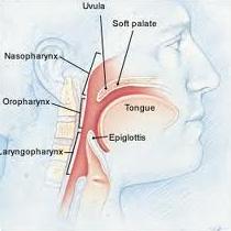 Uvulopalatopharyngoplasty