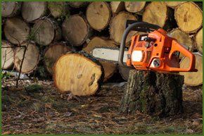 A chainsaw by log supplies