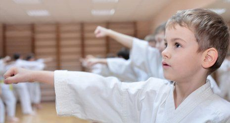 Martial Arts Organisations and Schools that we are associated with