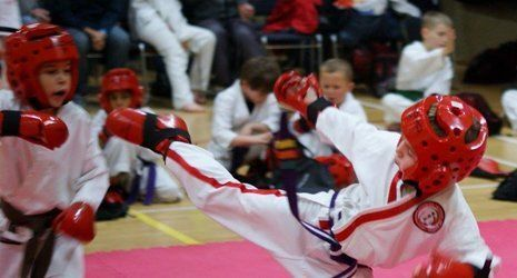 Martial Arts Organisations and Schools that we are involved with