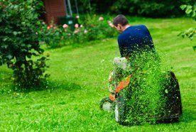 Lawnmower sales
