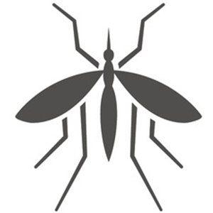 disinfestazione mosche e zanzare