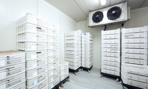 Stacks of bread trays in a chiller room