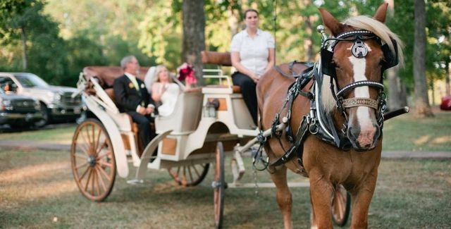 wedding carriages in arkansas