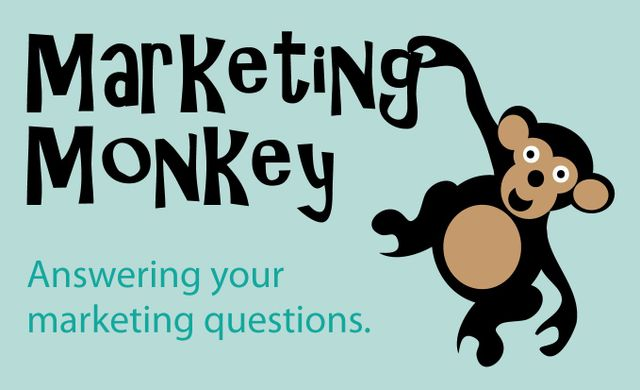 Don't Hide Be Seen marketing consultant herefordshire worcestershire gloucestershire Hereford Bromyard Leominster Abergavenny Ross on Wye Malvern New Customers Local Business Small business Start Up Business Leaflets Brochures Design Brand Branding Logo Copywriting Content Website Social Media Marketing Campaign Marketing Planning Marketing Strategy Networking 4N Duchy Wire Local Business Marketing Monkey Create Herefordshire Herefordshire Means Business Herefordshire Get Social Success Tips Growing Business Business Growth Business Owner Communication Start Ups New Launch New Business Lead Generation Generate Leads Support Local