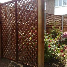 trellis and fence combinations