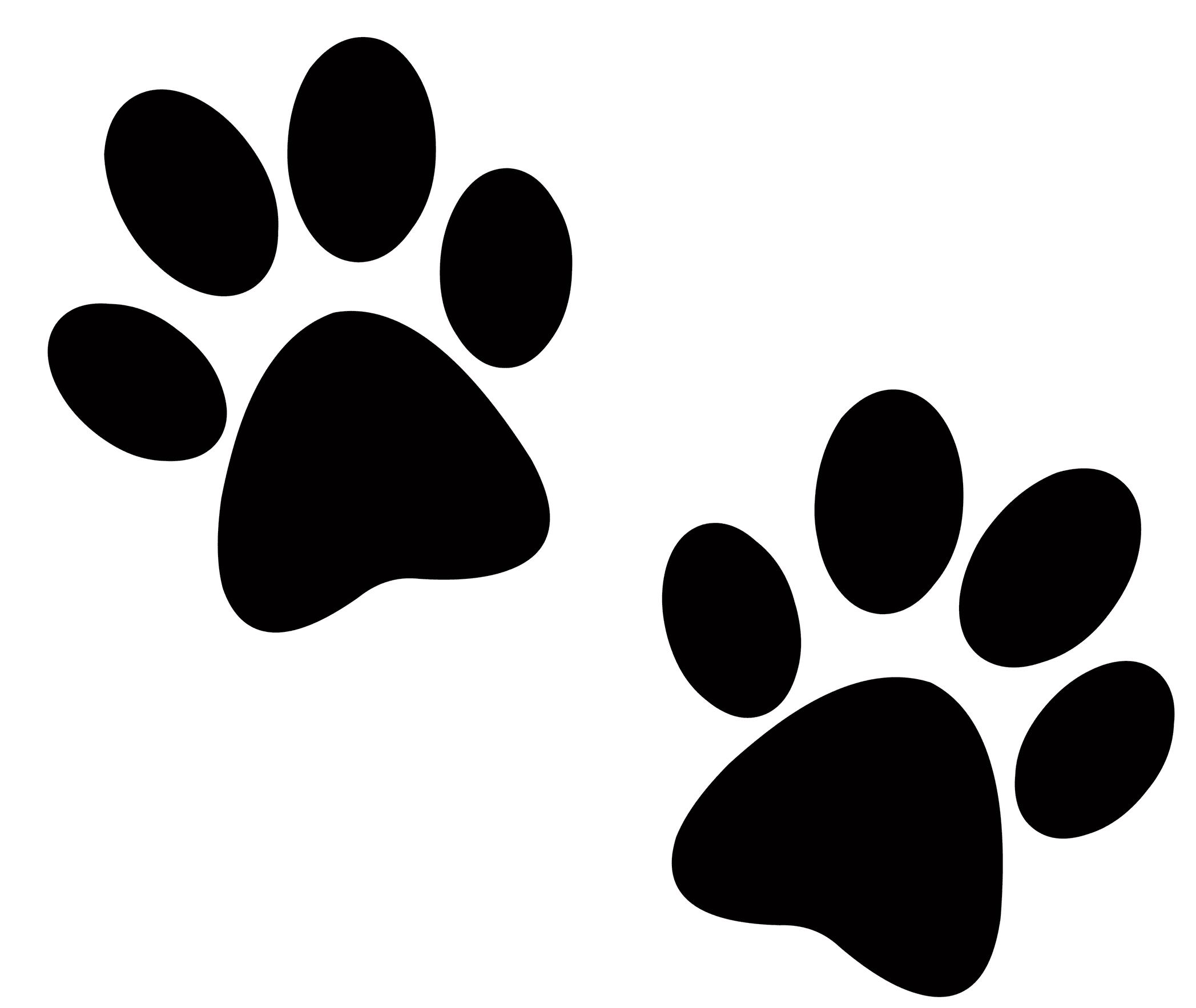 Paw Prints Dog Boarding