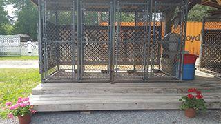 Pet Boarding Outdoor Area in Lumberton, NC