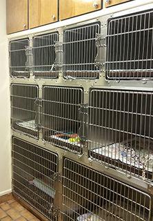 Pet Boarding Facility in Pembroke, NC