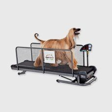 treadmills for dog