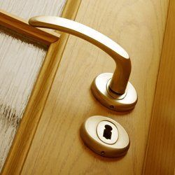 door with lock system