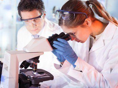 controllo qualità al microscopio