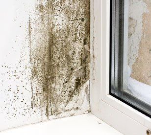 condensation issues