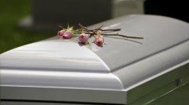 quattro rose appoggiate su un cofano funebre