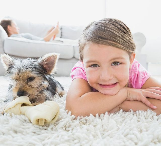 happy girl and doggie on clean carpet