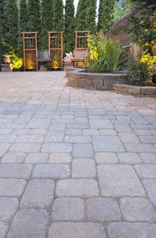 Stone paving and rockeries full of shrubs and bushes, in a garden lined with fir trees