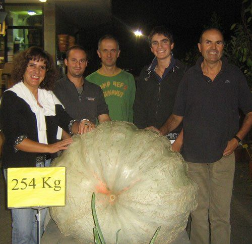 staff con una zucca gigante da 254 kg
