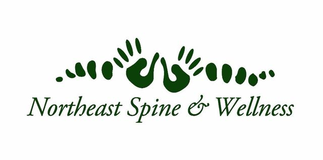 logo for Northeast Spine and Wellness