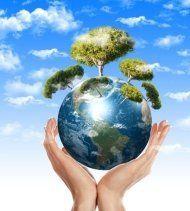 Valutazione stabilità degli alberi