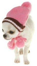 Female Chihuahua pink hat