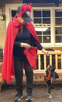 chihuahua-in-bat-costume -
