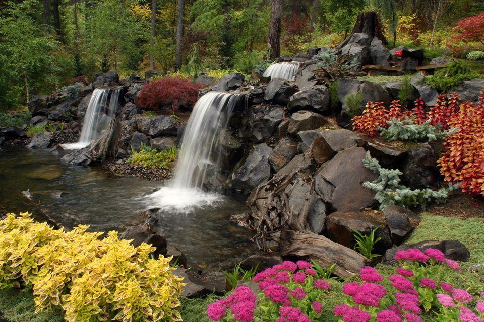 winter greenery plants waterfall