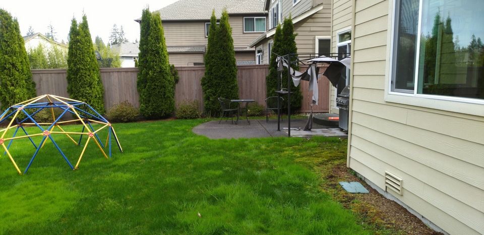 before picture of backyard resort