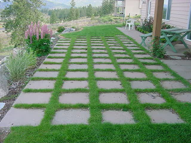 grass between paver walkway