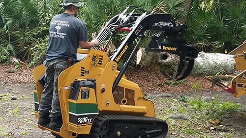 Palm Tree Removal Fernandina Beach, FL