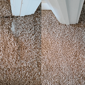 Ace Carpet Cleaning Carpet Repair or Patching