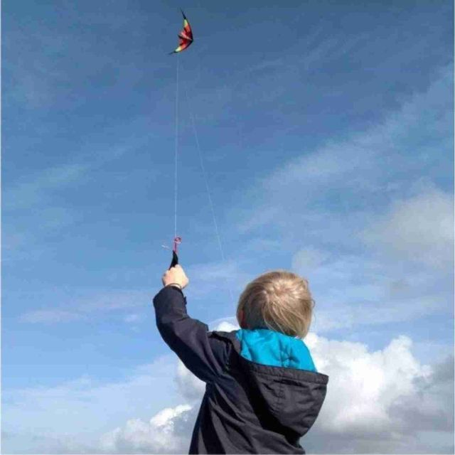 Westward Ho! Festival Of Kites is a celebration of all types