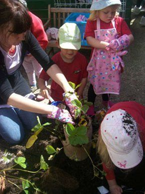 Day nursery - Havant, Hampshire - The Wendy House - Planting