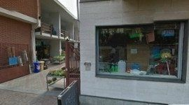 terriccio, vasi, animali da cortile