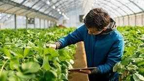Agroalimentare ed industriale