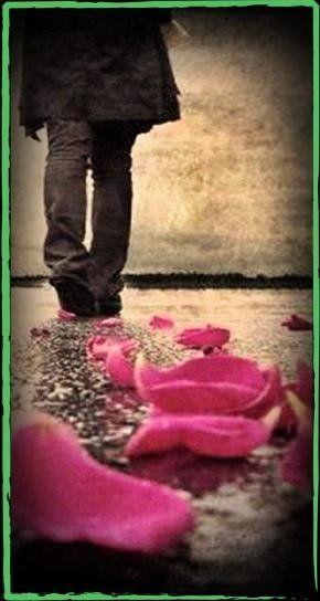 petali di fiori sul pavimento mentre una persona cammina