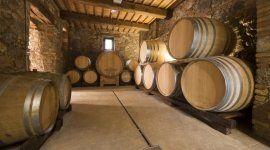 botti, invecchiamento vino