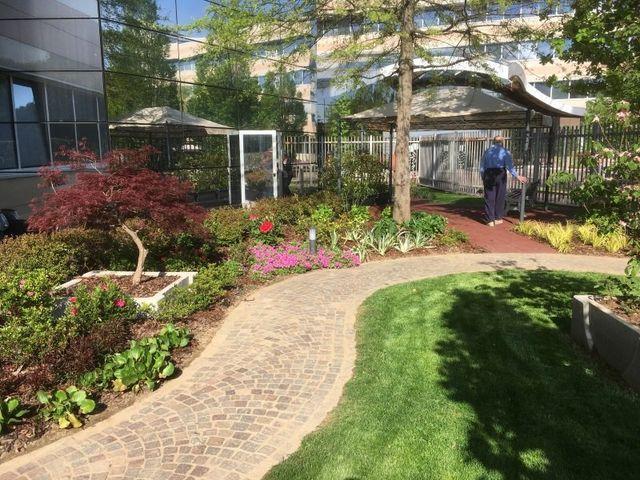 Progettare Il Giardino Da Soli : Allestimento di giardini privati e pubblici sovico mb verde