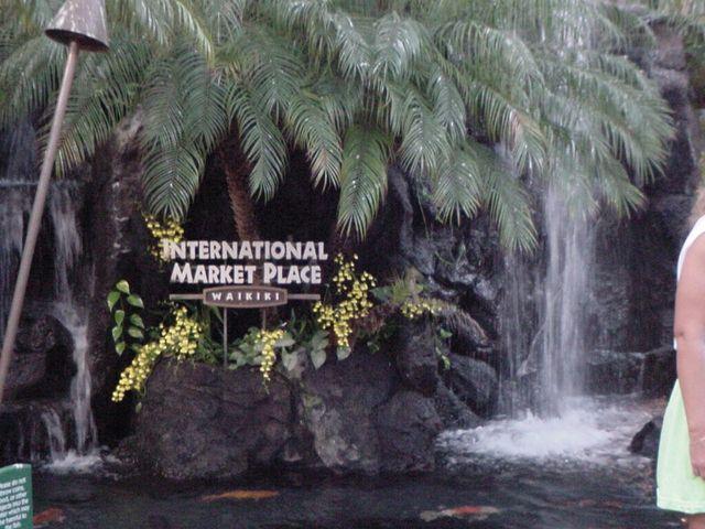 Pacific Aquascape International - Aquascape Ideas