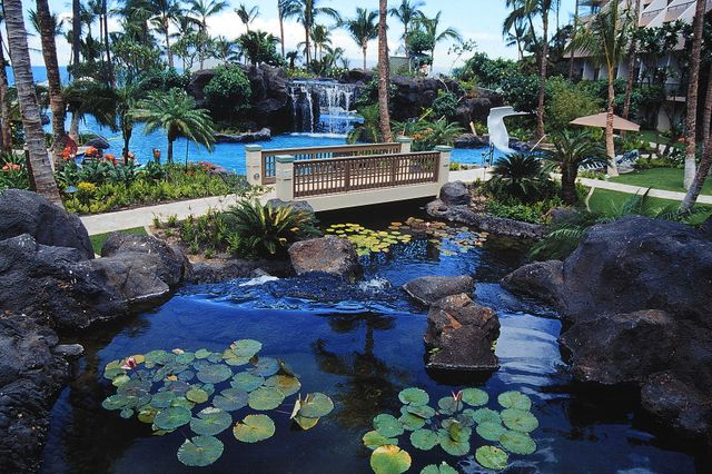 Pool at the Marriott Maui Ocean Club II