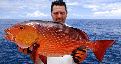Fisherman holding a beautiful red snapper