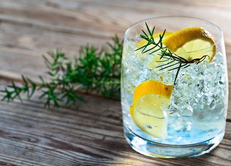 Glass of gin tonic with rosemary