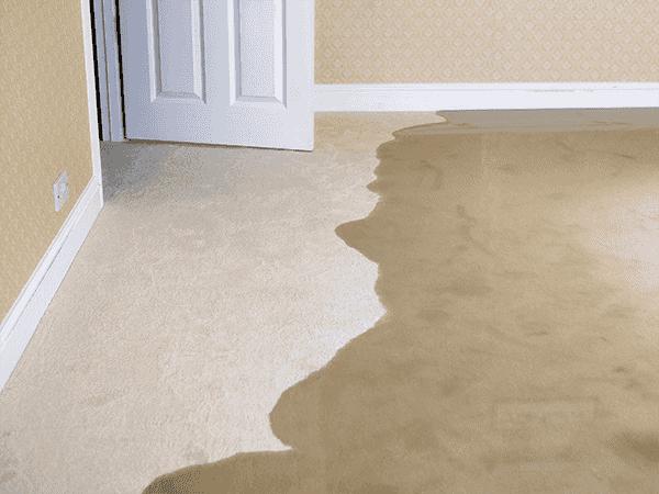 Commercial Plumber | Sewer Line Repair | Boiler Repair